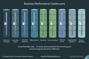 image of Business-Performance-Continuums-used by business and marketing consultant Gregory-Olson-Delightability-206-356-8811